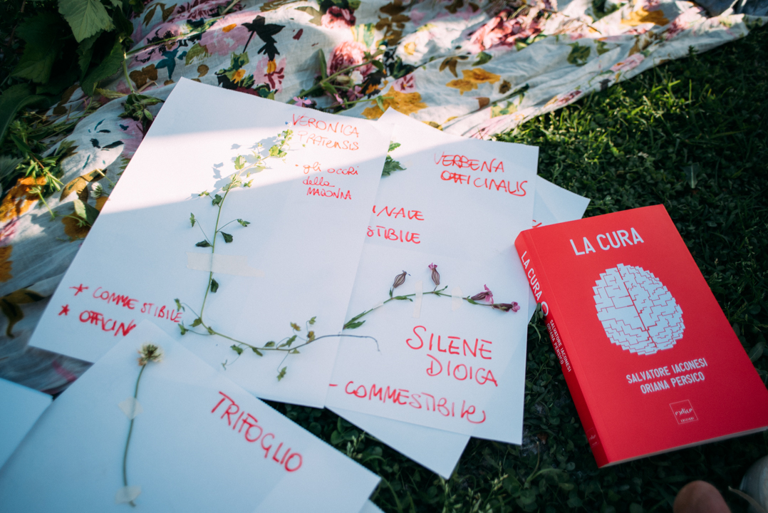 La Cura, Erbe Indisciplinate, recap