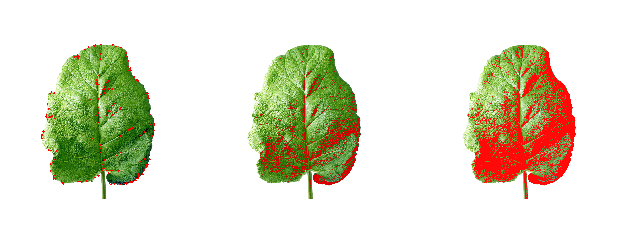 Leaf++ on Parsons Journal for Information Mapping