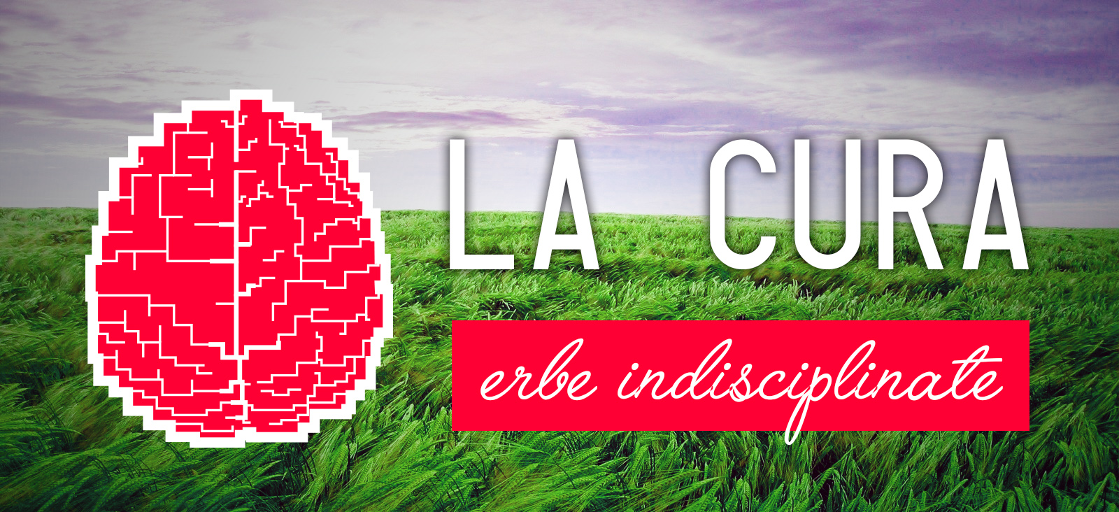 Erbe Indisciplinate, a workshop and a conversation on La Cura